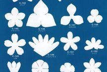 Deri çiçek