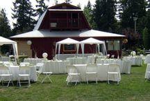 Possible wedding vendors