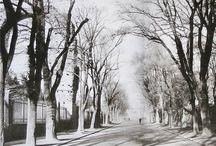 Via di San Gregorio (Via dei Trionfi)