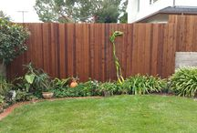 Wood Stained Fences