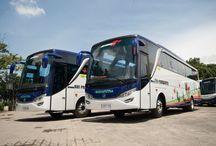 Big Jetbus 2+ Suryaputra 2015 / Jetbus 2+ Terbaik 2015