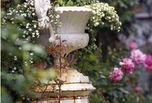 Urns and topiaries / by Ticking and Toile