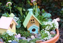 Kert - Garden / Minden ami kert, balkon, növény....