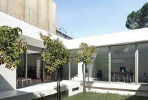 MANDRAGORA headquarters