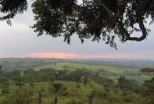 Kenya Mzuri