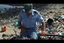 Favorite Short Environmental Videos