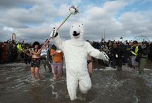 Platinum Pools Celebrates the Coney Island Polar Bear Club