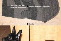 Patron tricot chien