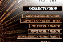Pheasant Feathers / The wonderful #colors and the #natural #stripes in the petite #pheasantfeathers have you seek them for outstretching the #carnivalwings. It is #celebration time!