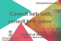 SoM #WelshWednesday / https://twitter.com/SoMStudentHub