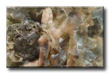 Serie GEOMETRIC / PHOTO ART° by Rosemarie Hofer
