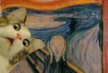 Cat Memes for Pip / by Kimberly Pitt