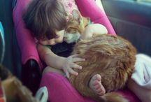 cats and children