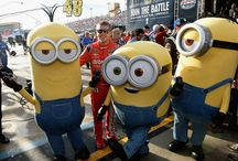 All About Minions!