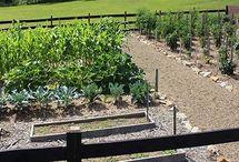 Raised row gardening method