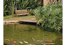 Lagoas artificiais