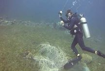 Scuba Diving / All about Scuba Diving. Equipment, dive sites and how-tos.