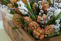 Flowerimpression