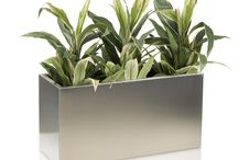 Planters Stainless Steel