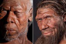 Human Reconstruction
