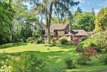 Great Properties / Properties that we think look particularly good