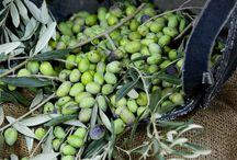 Vi ~ * Olives