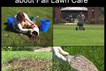 Lawns / Selected videos about lawn care, lawn species, especially for lower maintenance and less demand on resources.