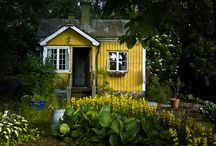 Tiny House / by Nicole Kirkman