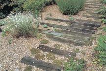 Courtyard/garden ideas