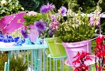 Garden: flowers