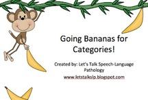 Categories SLT / by Nicole Saunders