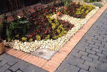 un pequeño jardín / jardinareia