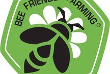 Bee Friendly Farming