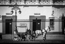 Sevilla Photography / Photography from Seville, Andalucia, Spain