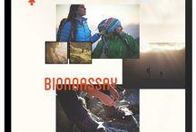 Lookbook website