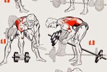 Vücut geliştirme