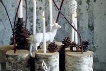 Forest natural christmas decorations and gifts