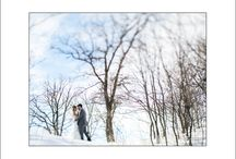 Winter Wedding Photos in Winnipeg / Photos of winter weddings in Winnipeg, Manitoba. Outdoor snow photos and ideas. / by blfStudios Fine Art Wedding Photography