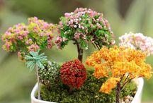 Micro Landscaping & Magical Gardening