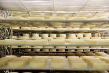 La vie de la fromagerie