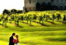 Wedding Ideas / by TJ Bowman