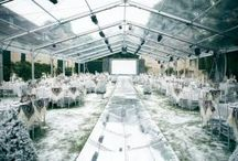 Gala Decor & Themes