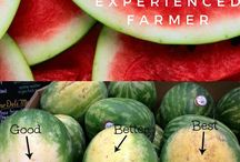 How to pick fruit