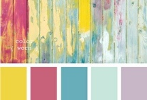 Captivating Color Palettes