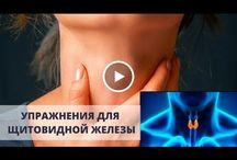 Щетовидная железа- видео