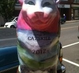 Cats  / Cats in Catskill, NY