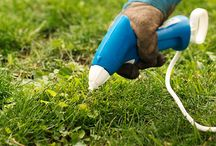 For the Home - Lawn / by Annie Aldaco