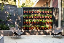 Decking and Garden / Inspiration  / by Dany Alves