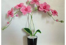 virág katalógus