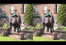 3d Documentaries / by BlueLightning 3D